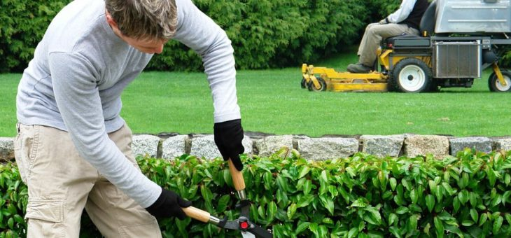 Quelques astuces pour prendre soin de son jardin en automne