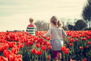conseils amenager jardin