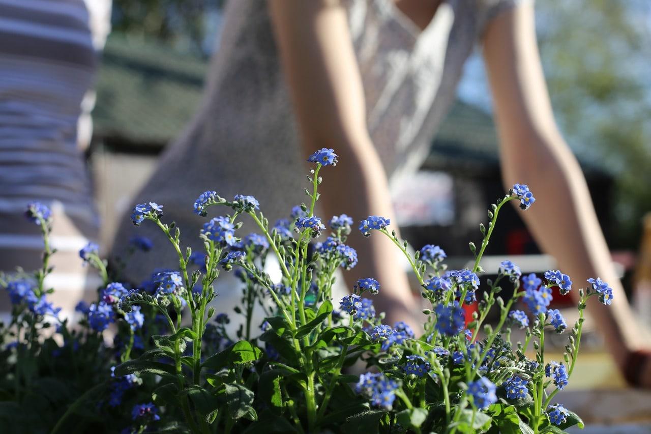 realiser travaux de jardin en mars